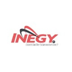 INEGY Logo